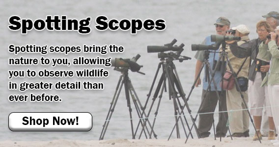 All Spotting Scopes